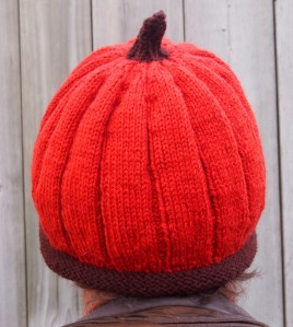 not a pumpkin rear view